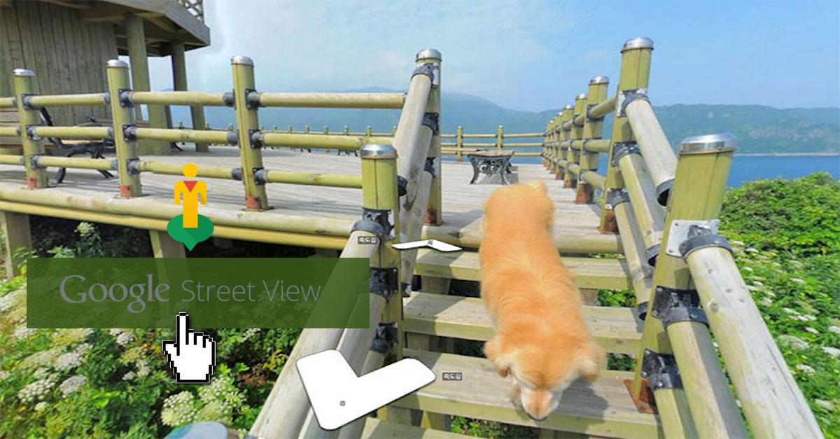 Pes pronásledoval Google fotografa Street View a každá sekvence je dokonalá
