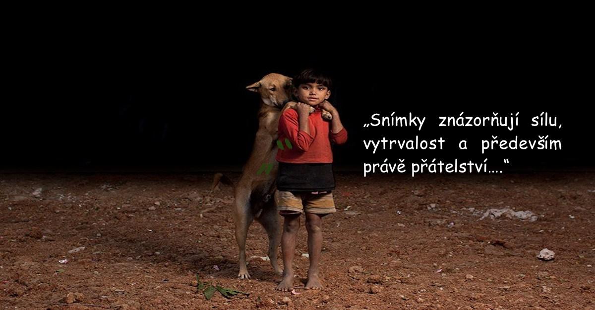 10 sirotků, kteří se rozhodli, to málo co mají, sdílet s 10ti nalezenými psy