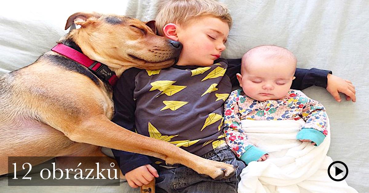 """Celosvětově známá dvojka má nové členy! Aneb """"děti a psi"""""""