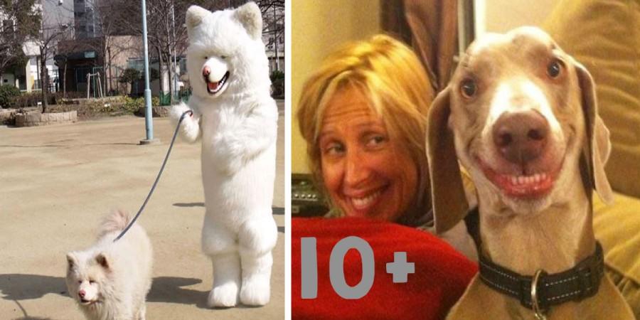Jaký pán, takový pes? (10+ obrázků)