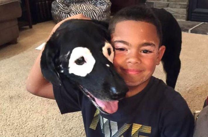 nemoc_vitiligo_depigmentace_u_psa_psu_deti_dite_lecba13