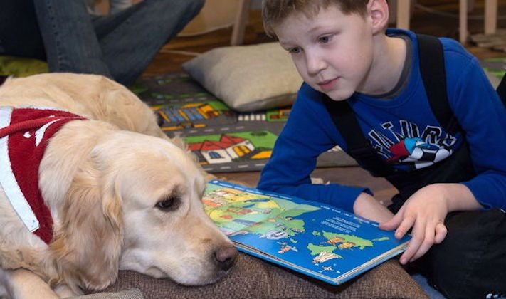 pomoc_psům_v_útulku_jak_pomoci_psovi_z_útulku_dobrovolnictví_útulek3