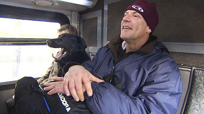 labradorský retrívr labrador pes cestuje sám v autobuse MHD psí samostatnost7