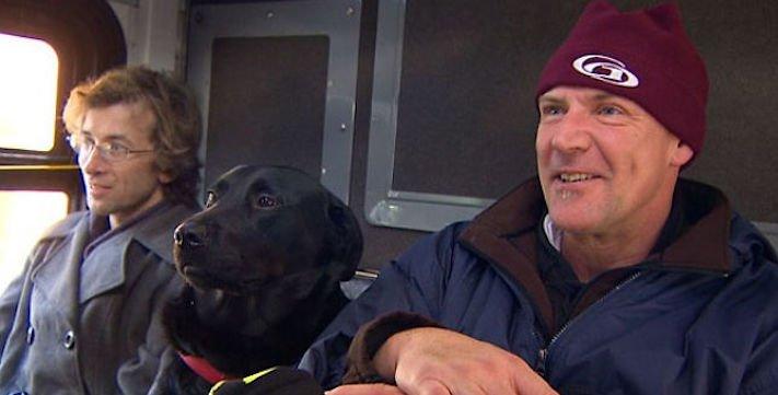 labradorský retrívr labrador pes cestuje sám v autobuse MHD psí samostatnost8