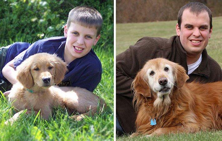 vyrůstání dospívání psů psa stárnutí rozdíly u psů během věku obrázky15