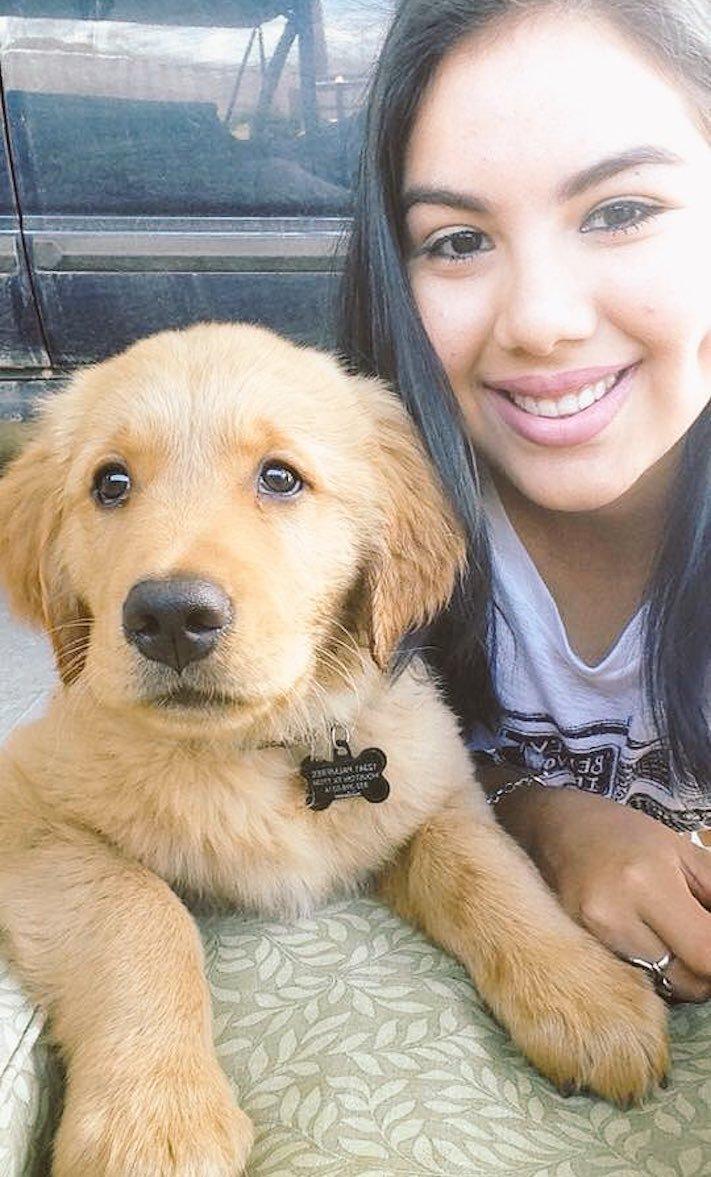 pes první den v novém domově obrázky rady tipy problémy řešení pomoc psům z útulku5