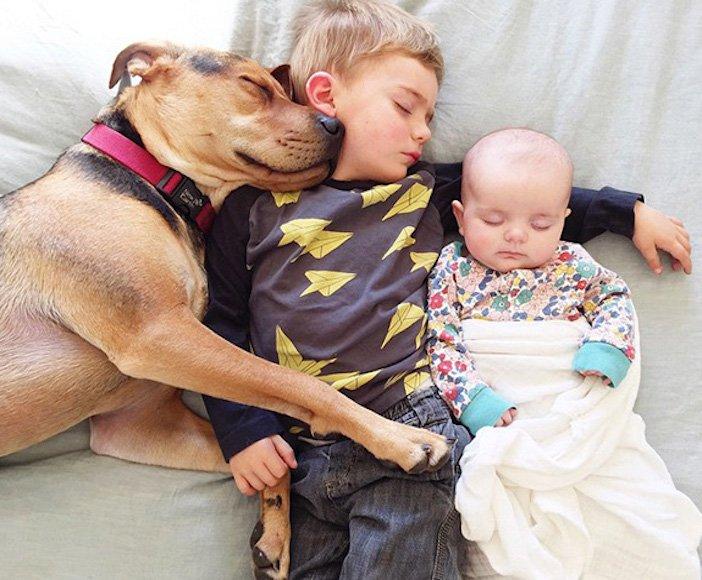 děti a psi dítě a pes nejlepší obrázky dětí a psů fotografie fotoalbum obrázek_2