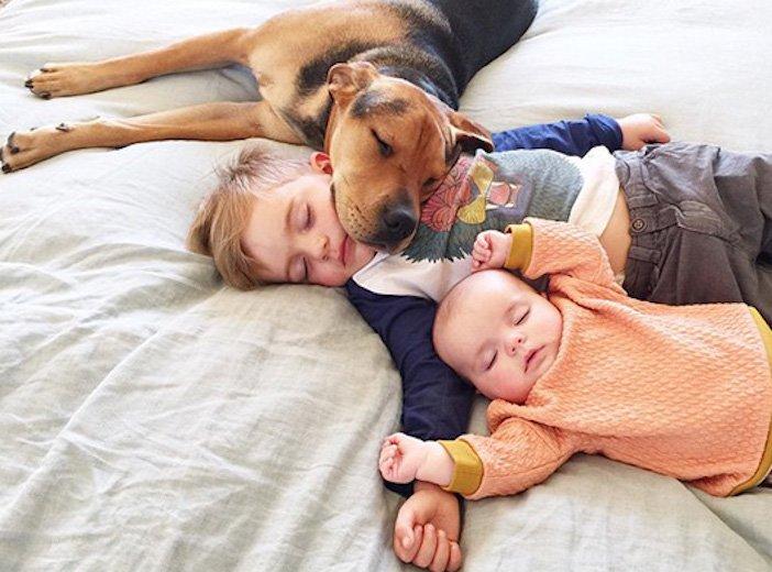 děti a psi dítě a pes nejlepší obrázky dětí a psů fotografie fotoalbum obrázek_3