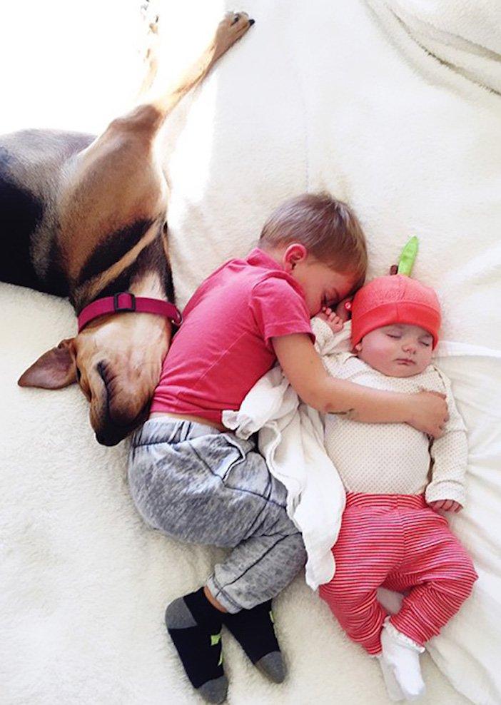 děti a psi dítě a pes nejlepší obrázky dětí a psů fotografie fotoalbum obrázek_7