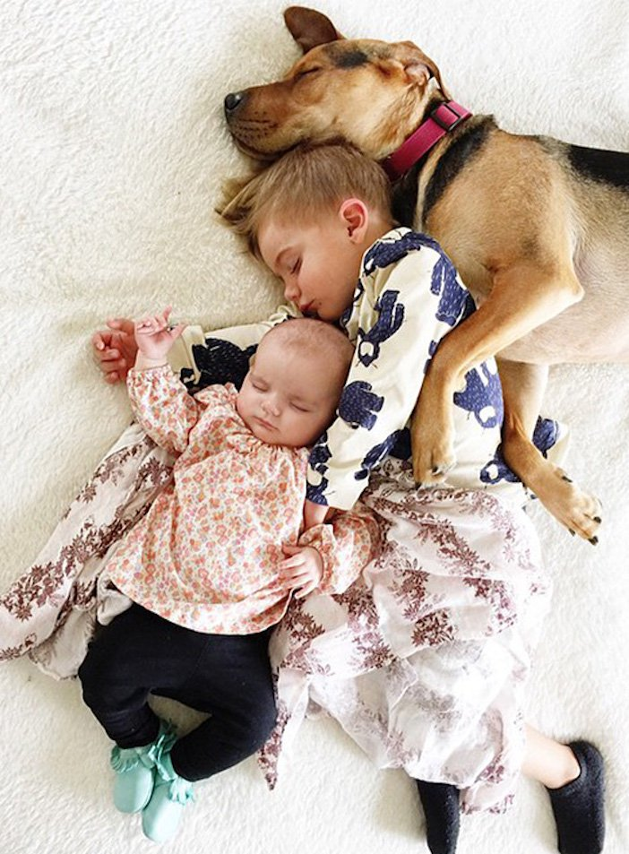 děti a psi dítě a pes nejlepší obrázky dětí a psů fotografie fotoalbum obrázek_8