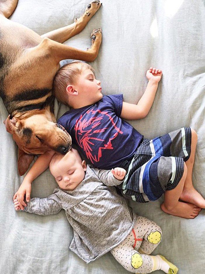 děti a psi dítě a pes nejlepší obrázky dětí a psů fotografie fotoalbum obrázek_9