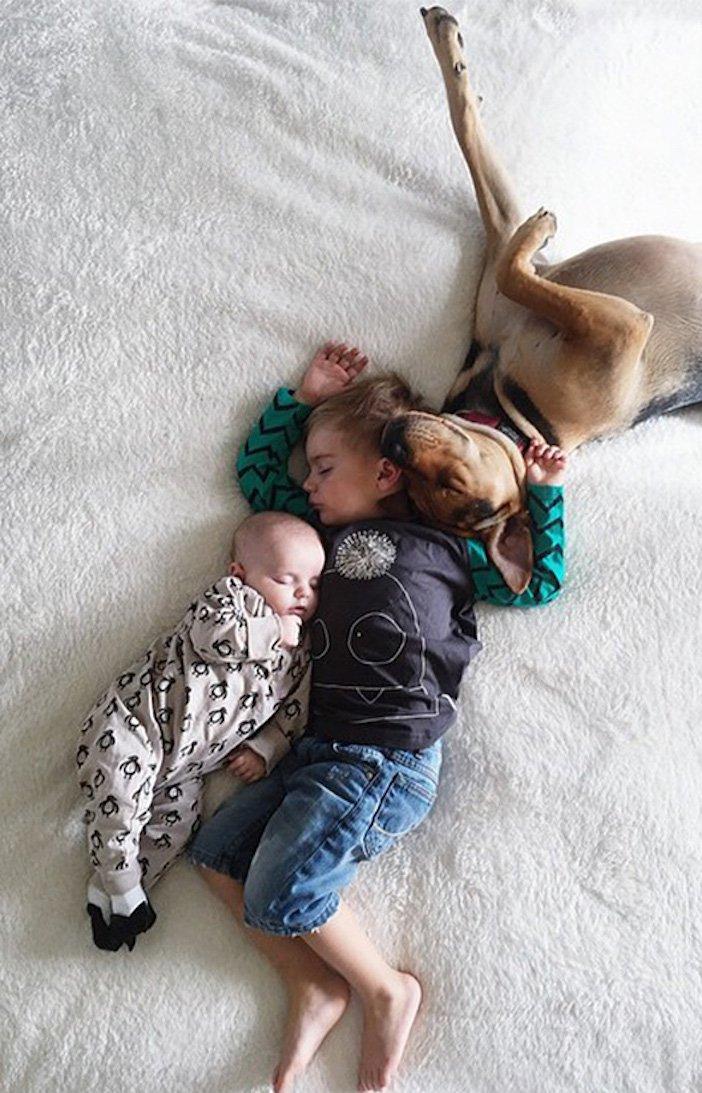 děti a psi dítě a pes nejlepší obrázky dětí a psů fotografie fotoalbum obrázek_10