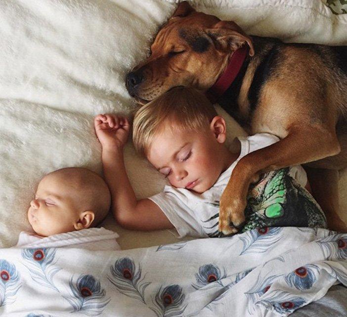 děti a psi dítě a pes nejlepší obrázky dětí a psů fotografie fotoalbum obrázek_11