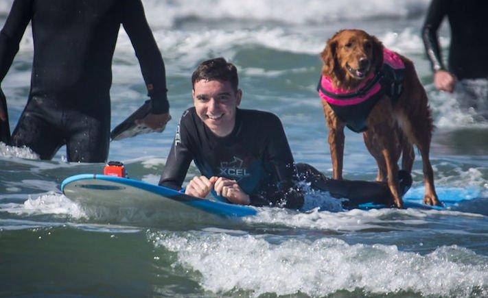 pes surfuje v moři na vodě surf surfující pes na prkně asistenční služební psi pomoc postiženým lidem s handicapem 8