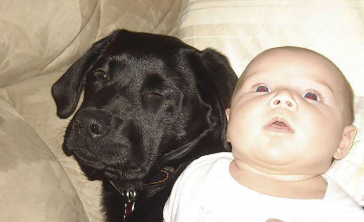 dítě a pes s dítětem novorozeně novorozenec příběh soužití nejlepší přátelství přítel 1