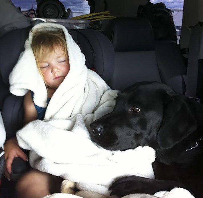 dítě a pes s dítětem novorozeně novorozenec příběh soužití nejlepší přátelství přítel 4