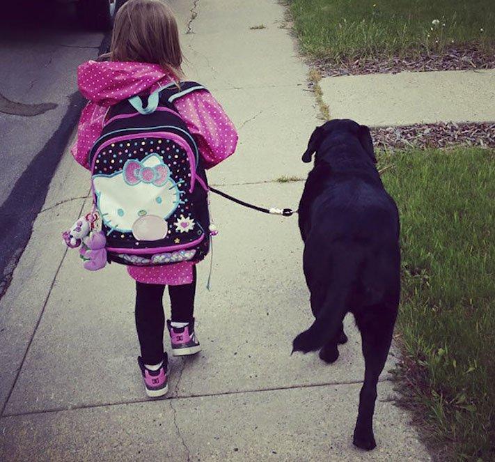 dítě a pes s dítětem novorozeně novorozenec příběh soužití nejlepší přátelství přítel 5