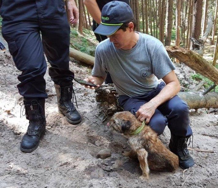 záchrana psa a lišky v českém ráji úspěšná záchránná akce vysvobození psa z nory 2