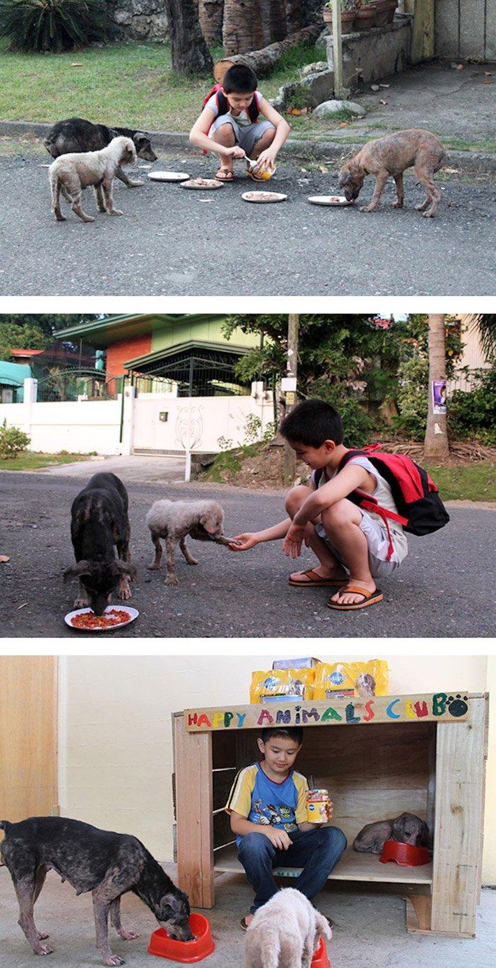 správná výchova dítěte chování ke psovi psí rodič 1