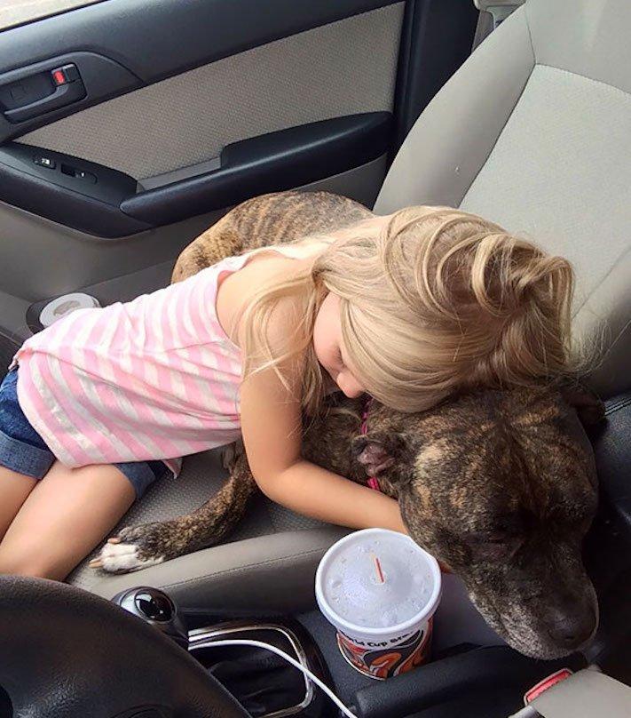 správná výchova dítěte chování ke psovi psí rodič 3