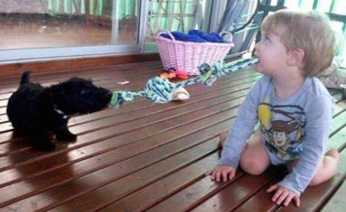dítě a pes soužití chování empatie respeck výchova obrázky 2