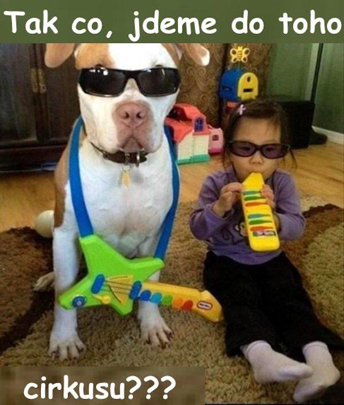 dítě a pes soužití chování empatie respeck výchova obrázky 3
