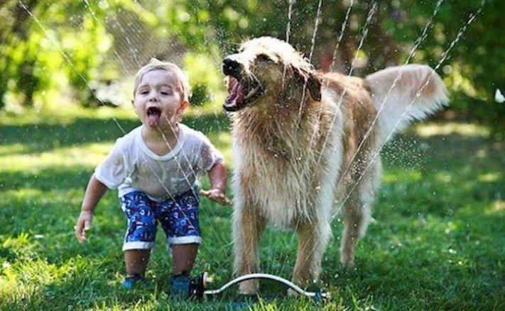 dítě a pes soužití chování empatie respeck výchova obrázky 10