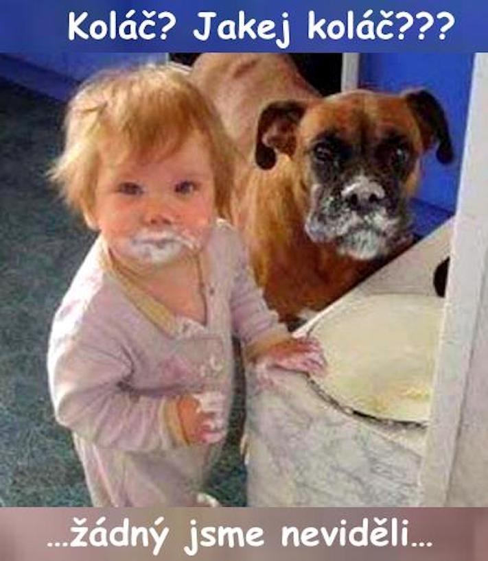 dítě a pes soužití chování empatie respeck výchova obrázky 16
