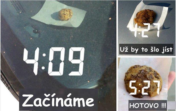 vysoká teplota vzduchu u psů pes a horko horké počasí rady tipy obrázky 2