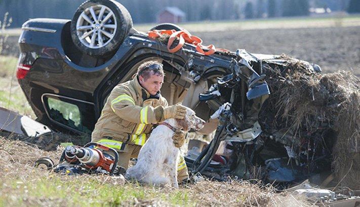 hasiči riskují život pro záchranu psa psů obrázky video fotoalbum 2