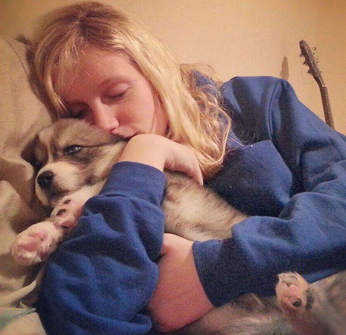 husky, sibiřský husky, psí plemeno, psí, plemeno, psa, obrázky, štěněte, štěně, huskyho, huski, hasky, haski, plemeno, psa obrázky, fotoalbum, video, modré, oči, u psa 1