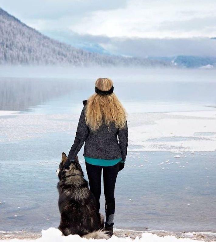 husky, sibiřský husky, psí plemeno, psí, plemeno, psa, obrázky, štěněte, štěně, huskyho, huski, hasky, haski, plemeno, psa obrázky, fotoalbum, video, modré, oči, u psa 9