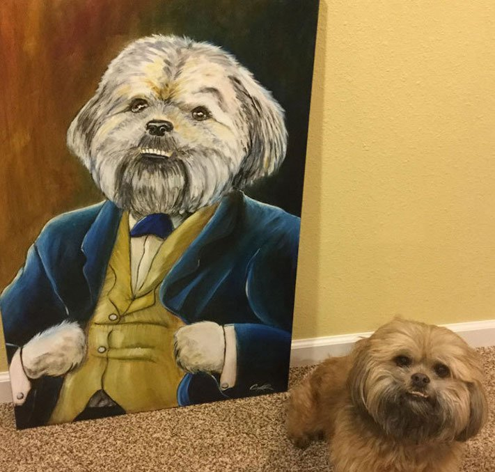 pes, psi, kteří se mají, lépe, než lidé, lidé, lidi, lepší, psí, život, pod, psa, pod psa, fotoalbum, obrázky, psů, vtipné, zábavné 8