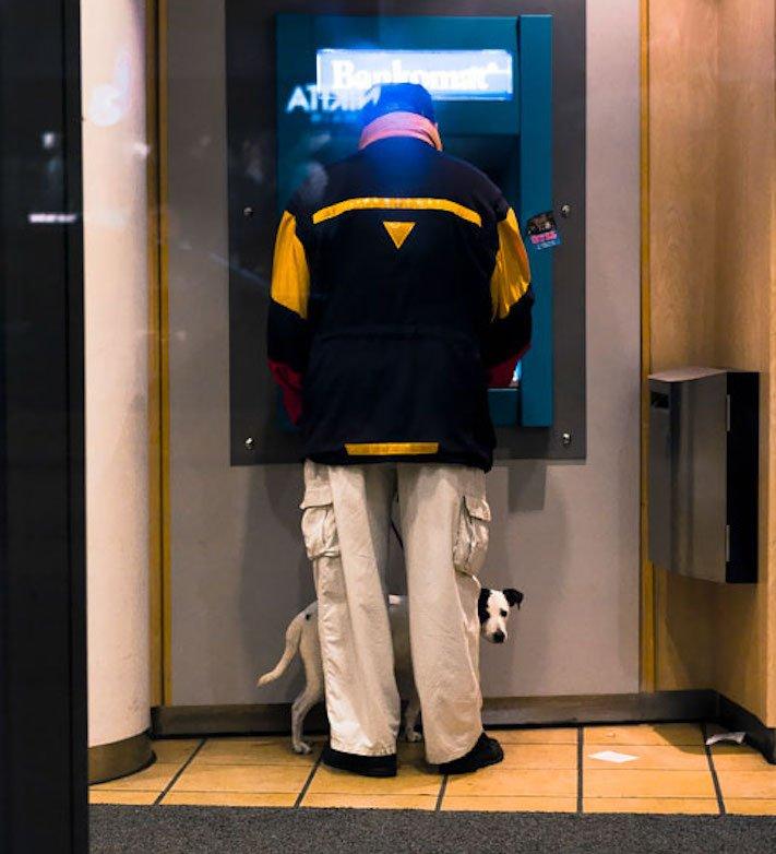 psí ochrana, u bankomatu, bankomat, výběr hotovosti, vtipné obrázky se psy 7