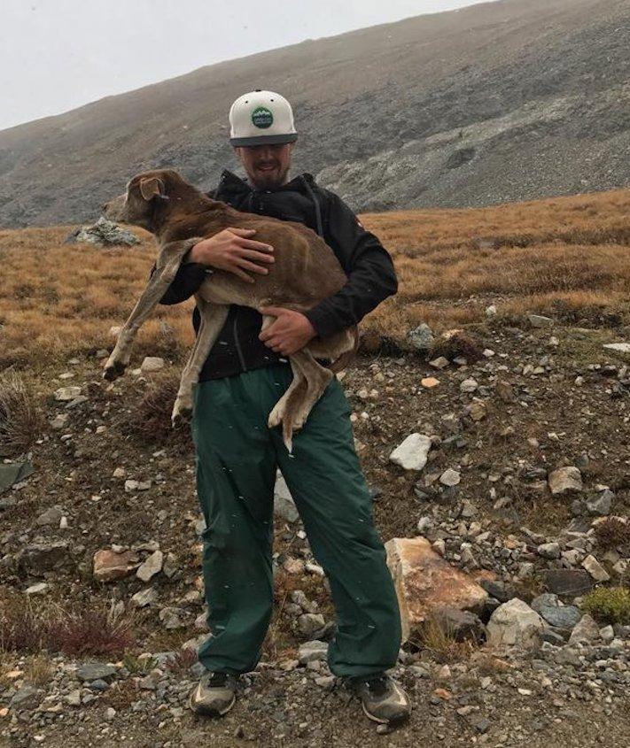psí, vysokohorská turisitka, turista, hledání, psa, v horách, hory, příběhy psů 3