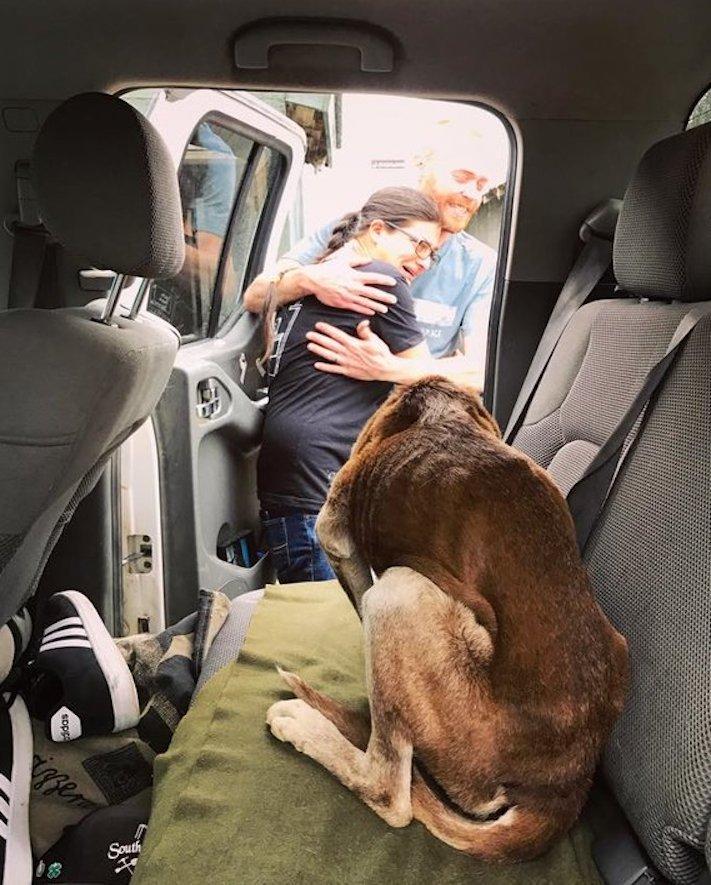 psí, vysokohorská turisitka, turista, hledání, psa, v horách, hory, příběhy psů 6