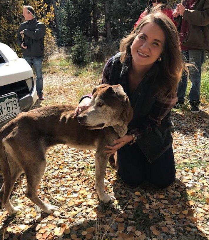 psí, vysokohorská turisitka, turista, hledání, psa, v horách, hory, příběhy psů 8