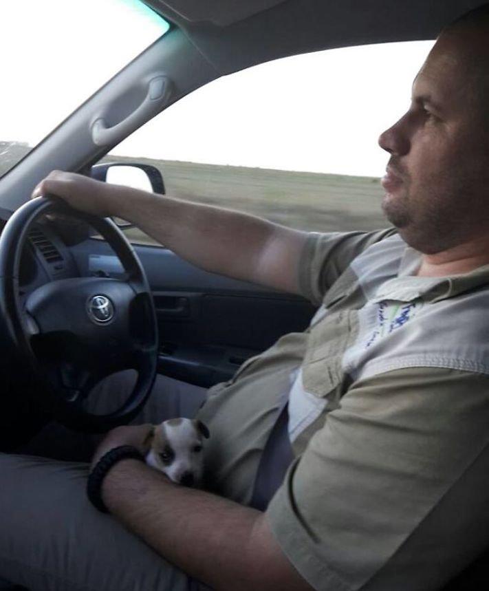 první obrázky se psem, první, obrázek, se psem, první den se psem, pes z útulku, fotoalbum, fotografie, obrázky, psí příběhy 10