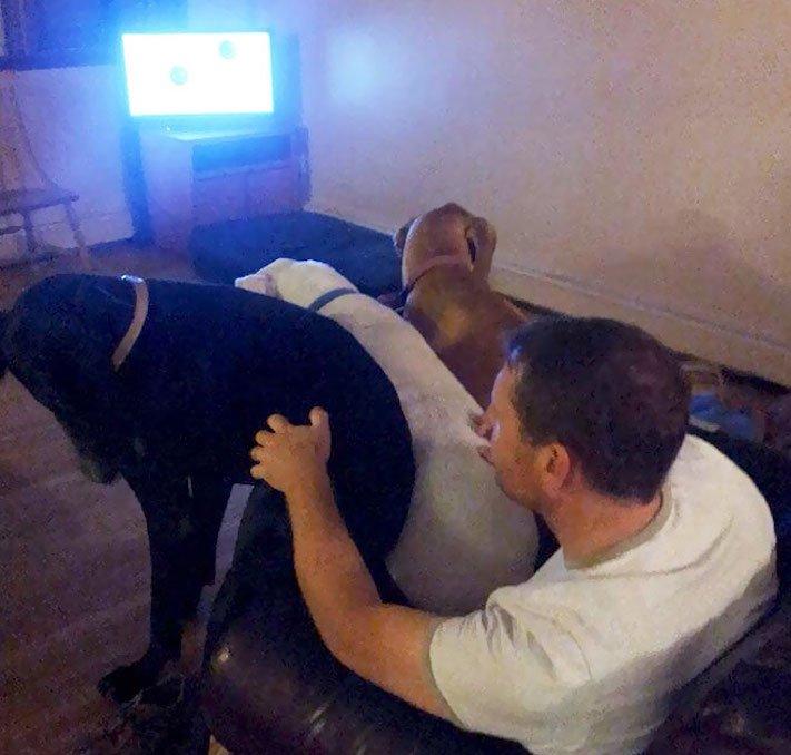 zábavné, vtipné, obrázky, fotky, velkých, big, obrovských, psů, psi, psí, fotoalbum 7