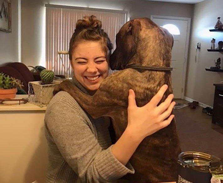 adopce psa z útulku, první dny, problémy, radost, vděčnost, psa, psí příběh, psí příběhy 2
