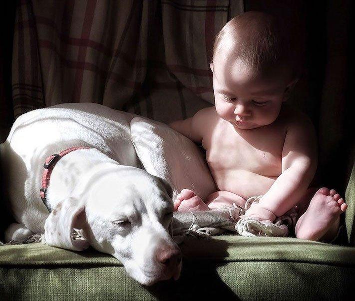 fotoalbum, děti a psi, pes a dítě, dítě se psem, novorozenec, pes, fotky, obrázky, příběhy, diskuze 2