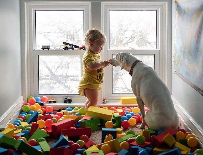 fotoalbum, děti a psi, pes a dítě, dítě se psem, novorozenec, pes, fotky, obrázky, příběhy, diskuze 10