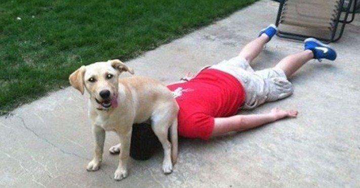 pes, strká, dává, zadek, pozadí, do obličeje, směrem, ke mně, k majiteli, majiteli, majitel, problémy, se psem, výcvik, výchova, psa 9