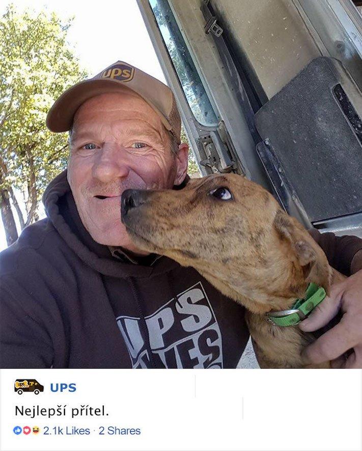pes a pošťák, psi, pošťáci, láska, psí příběhy, příběh, psa, obrázky, fotoalbum, psi, versus, vs, pošťáci, pes vs. pošťák 4