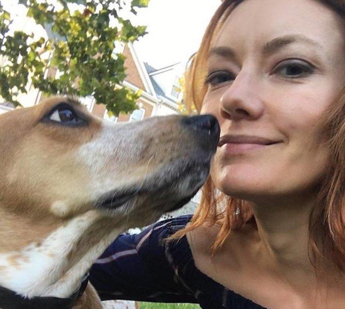 testování, na psech, psi, v laboratoři, laboratoř, lab, bígl, testy, experimenty, testování, na psech, psovi, pes 4
