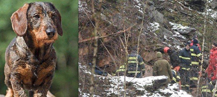 záchrana, jezevčíka, kamenolomu, záchranná akce, hasiči, vytahují, psa, hárající, fenka, jak vylákat psa, video, obrázky, jezevčík Milda 3