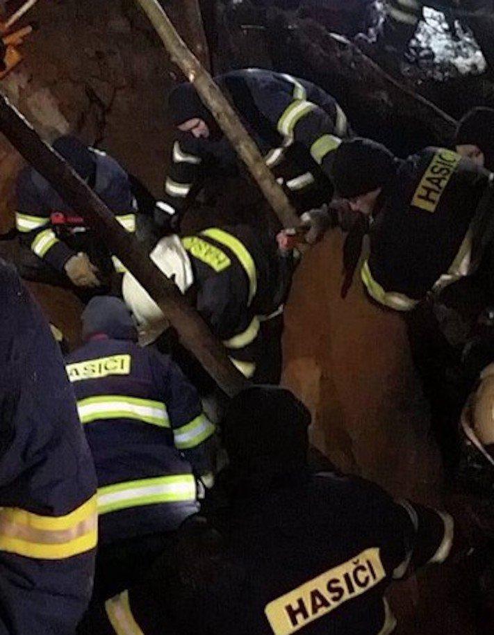 záchrana, jezevčíka, kamenolomu, záchranná akce, hasiči, vytahují, psa, hárající, fenka, jak vylákat psa, video, obrázky, jezevčík Milda 4a