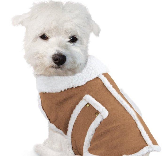 vánoční dárek, pro psa, vánoční, dárky, pro psy, pes, psí dárky, dárečky, nápady, tipy, fotografie, diy, obrázky, nápad, rady, tip 4