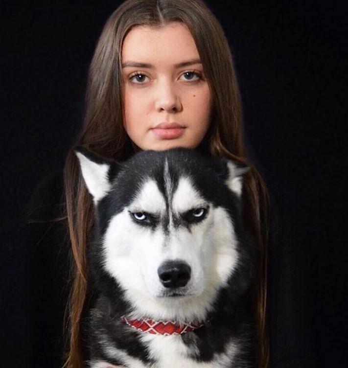 husky, sibiřský husky, anuko, vánoce, vitpné, zábavné, nejlepší, nejvtipnější, vánoční přání, pohled, přání, na vánoce, se psem, se psy, husky, fotografie, fotoalbum 8