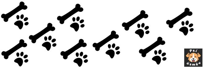 Bolest břicha u psa